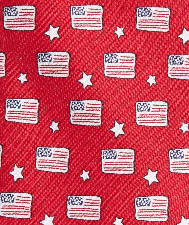 Boys' Flags & Stars Printed Tie