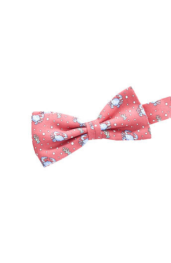 b718e8210d24 Kids Bow Ties: Shop Vineyard Vines for Boys Bow Ties