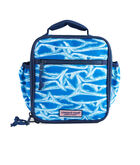 Boys Brushed Marlin Lunch Box