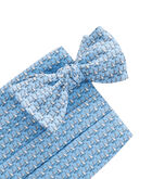 Sailboat Cummerbund Set