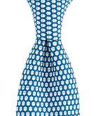 Acorn Icon Tie