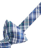 Trumpet Plaid Shirting Bow Tie