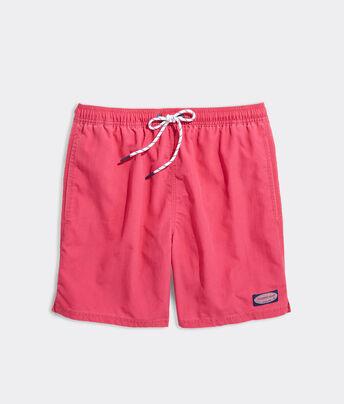 Jreergy Mens Beach Shorts Watercolor Brown Walrus Swim Trunks Quick Dry Swimwear