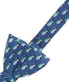 Striped Bass Bow Tie