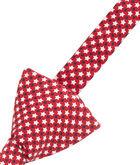 Star Spangled Bow Tie