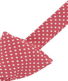 Polka Dots Bow Tie