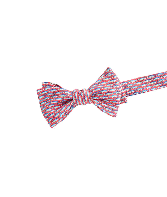 Blue Fish Bow Tie