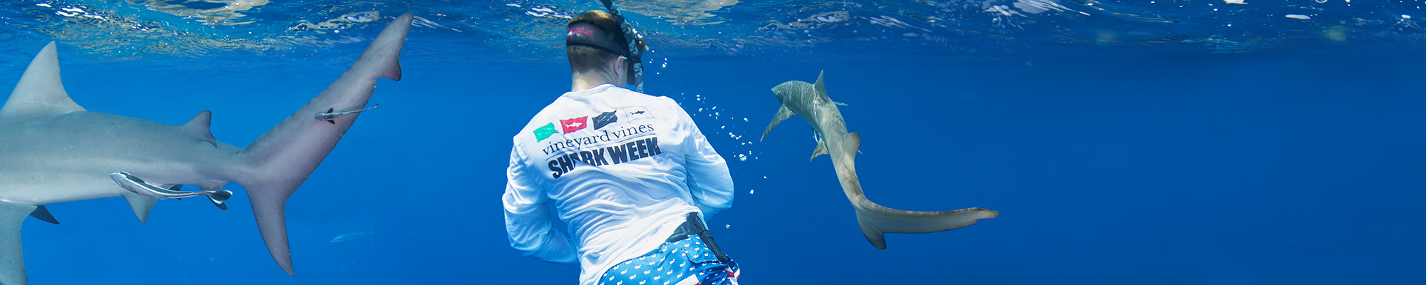 man swimming with sharks in some vineyard vines Shark Week gear!