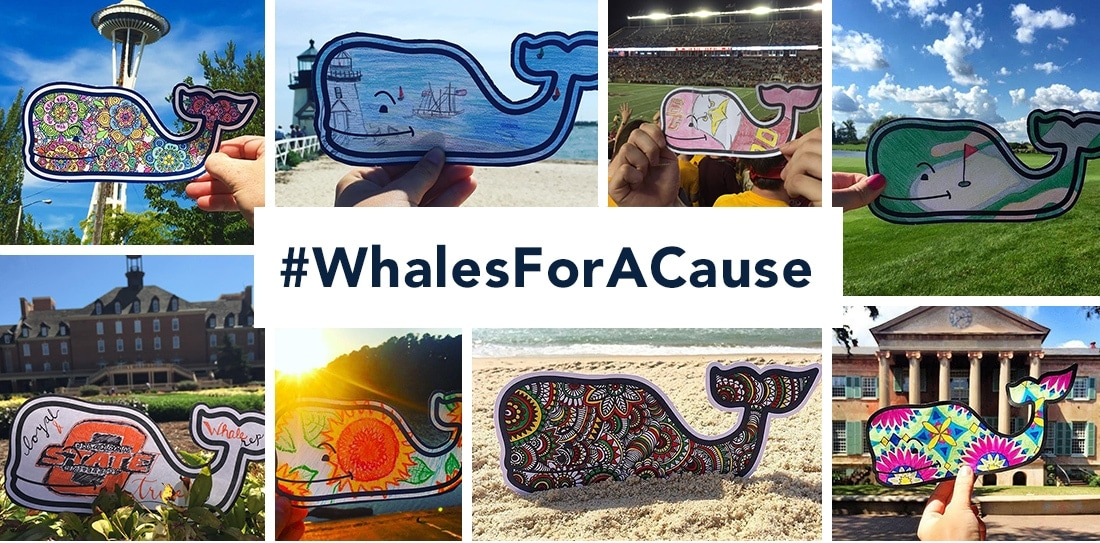 Images of colored in whales from past Whales For A Cause Initiatives.